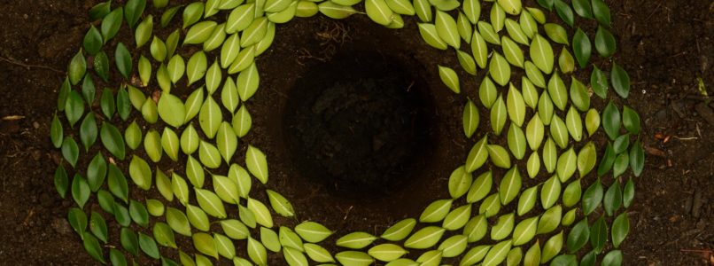 natural-living-agriwiki