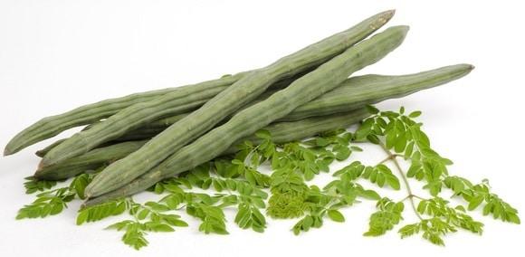 முருங்கைக்காயும் அதன் சுவையும் moringa-oleifera-leaves-and-pods