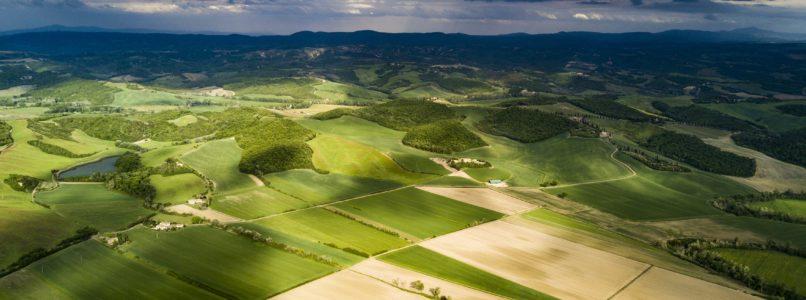 இயற்கை விவசாயம் Basics of natural farming