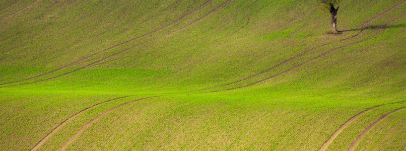 agri-field