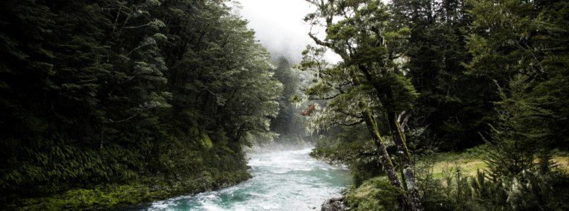 பழந்தமிழரின் 47 வகையான நீர்நிலைகள்