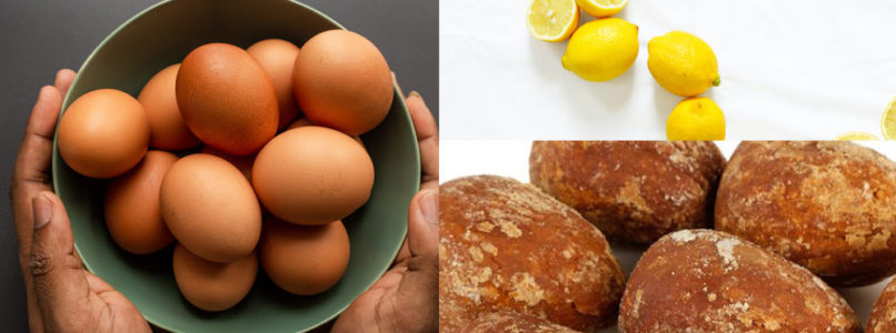 முட்டை அமினோ அமிலம் - Egg Amino Acid இயற்கை பூச்சிக்கொல்லி