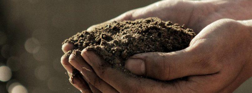 How do we grow soil?