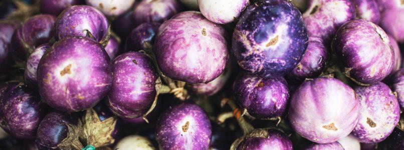 கத்தரியில் புழுக்களற்ற காய்கள் brinjal-eggplant-agriwiki
