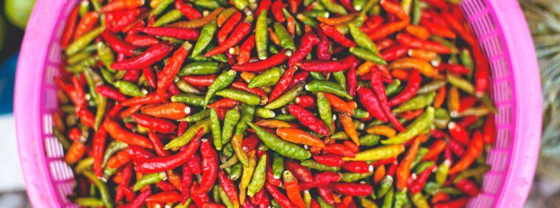 காய்கறி பயிர்களில் பூ உதிர்வதை கட்டுப்படுத்த chilli